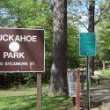 Tuckahoe Car Insurance