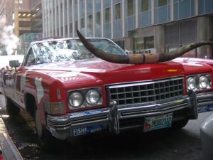 Texas Car Insurance: Comprehensive Auto Coverage