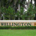 Wellington Car Insurance